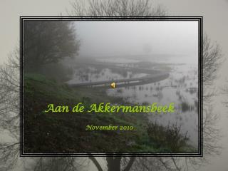 Aan de Akkermansbeek