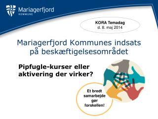 Mariagerfjord Kommunes indsats p� besk�ftigelsesomr�det