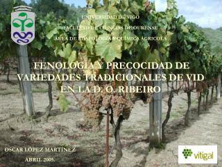 FENOLOGÍA Y PRECOCIDAD DE VARIEDADES TRADICIONALES DE VID EN LA D. O. RIBEIRO