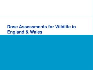 Dose Assessments for Wildlife in England & Wales