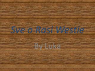 Sve o  Rasi Westie