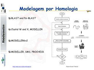 Modelagem por Homologia