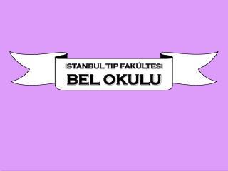 İSTANBUL TIP FAKÜLTESİ BEL OKULU