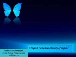 Program Comenius �Beauty of region�