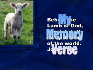 Behold the Lamb of God, which taketh away the sin of the world. John 1:29