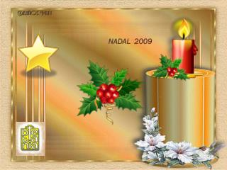 NADAL  2009