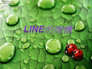 LINE 的商機