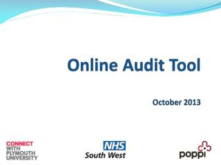 Online Audit Tool October 2013
