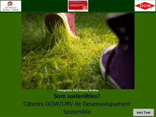 Som sostenibles? Càtedra DOW/URV de Desenvolupament  Sostenible