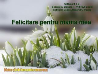 Felicitare pentru mama mea