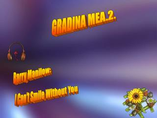 GRADINA MEA.2.