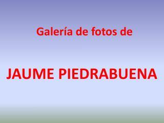 Galería de fotos de