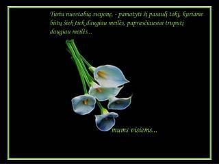 Kad  šypsena būtų  graži kaip rožė ir kad jos aromatas  būtų balzamas širdžiai.