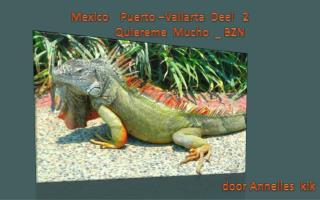 Mexico    Puerto �Vallarta  Deel   2               Quiereme  Mucho  _ BZN