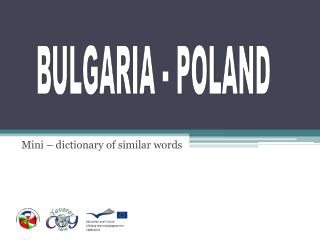 Mini – dictionary of similar words