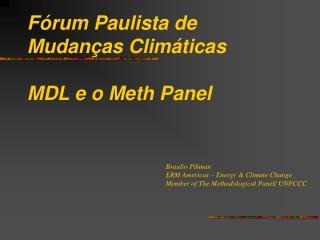 Fórum Paulista de Mudanças Climáticas MDL e o Meth Panel