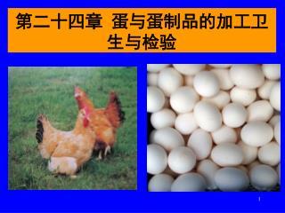 第二十四章 蛋与蛋制品的加工卫生与检验