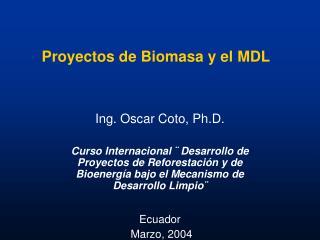 Proyectos de Biomasa y el MDL