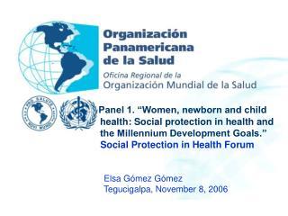 Elsa Gómez Gómez                  Tegucigalpa, November 8, 2006