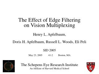 The Schepens Eye Research Institute An Affiliate of Harvard Medical School