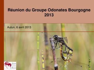 Réunion du Groupe Odonates Bourgogne 2013