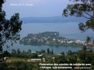 Fédération des comités de solidarité avec l'Afrique  sub-saharienne .   (cliquer pour avancer)