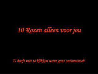 10 Rozen alleen voor jou