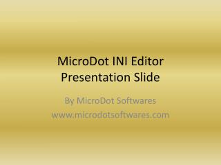 MicroDot INI Editor Presentation Slide