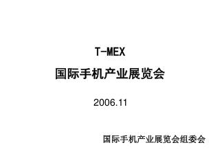 T-MEX  国际手机产业展览会