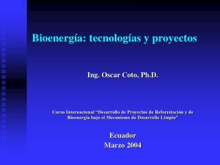 Bioenergía: tecnologías y proyectos