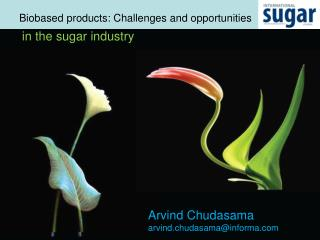 Biobased  products: Challenges and opportunities