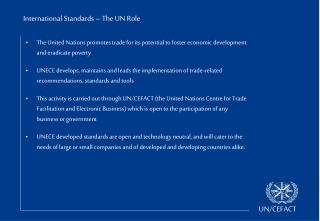 International Standards – The UN Role