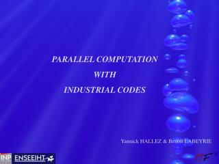 PARALLEL COMPUTATION WITH INDUSTRIAL CODES