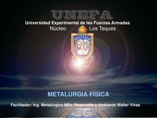 Universidad Experimental de las Fuerzas Armadas