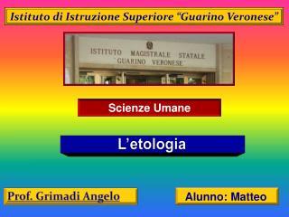 """Istituto di Istruzione Superiore """" Guarino  Veronese"""""""
