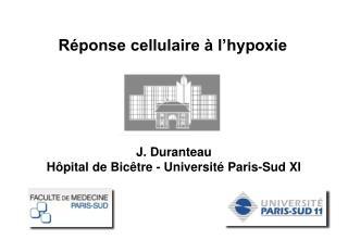 J. Duranteau H ôpital de Bicêtre -  Université Paris-Sud XI
