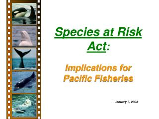 Species at Risk Act :