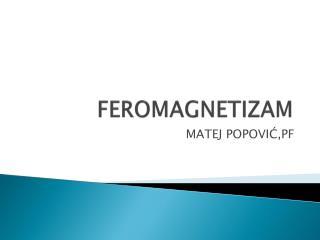 FEROMAGNETIZAM
