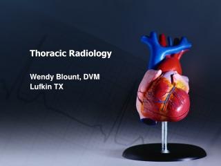 Rib Radiography
