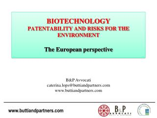 BIOTECHNOLOGY PATENTABILITY AND RISKS FOR THE ENVIRONMENT The  European perspective