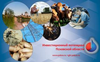 pskov.ru •gkt.pskov.ru
