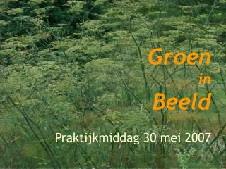 Groen in Beeld Praktijkmiddag 30 mei 2007