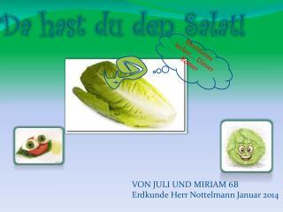 Da hast den  Salat Da hast du den Salat!