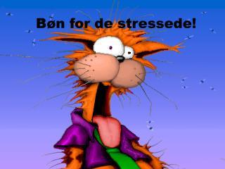 Bøn for de stressede!