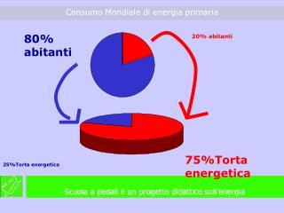 75%Torta energetica