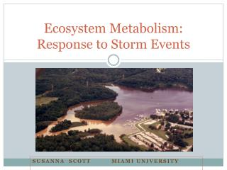 Ecosystem Metabolism: Response to Storm Events