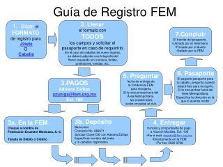 Guía de Registro FEM