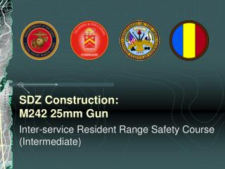 SDZ Construction: M242 25mm Gun