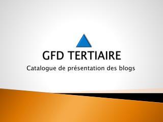 GFD TERTIAIRE