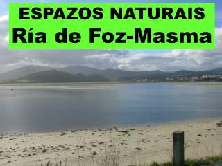 ESPAZOS NATURAIS Ría de Foz-Masma
